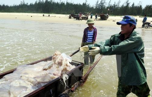 广义省向海上遇险渔民提供34亿多越盾的援助 hinh anh 1