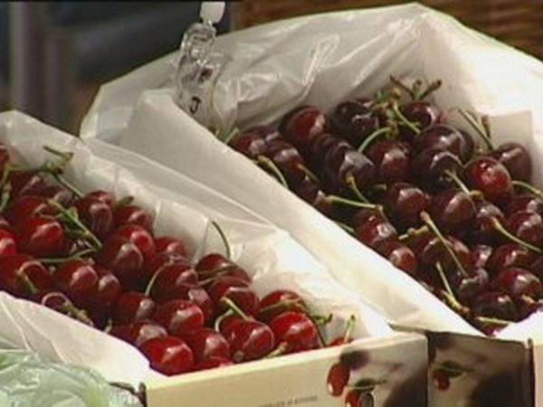 越南自澳大利亚的蔬果进口额突增 hinh anh 1