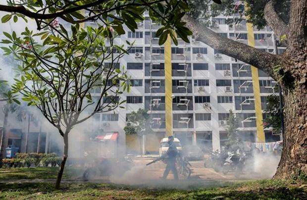 新加坡上周末新增寨卡感染病例12例 hinh anh 1