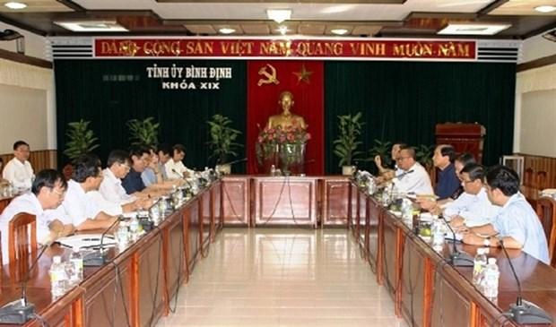 日本企业在越南平定省开展的绿色蔬菜种植试点项目获批 hinh anh 1