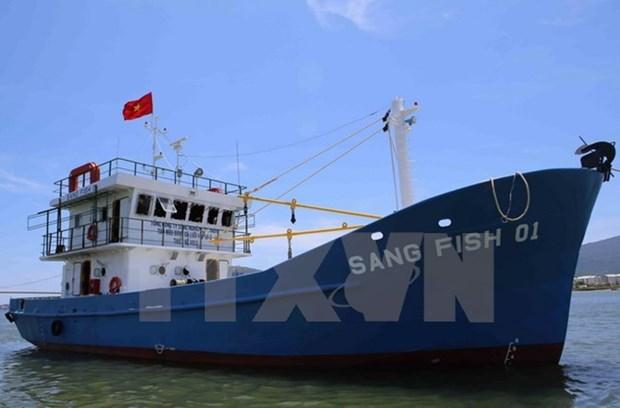 越南与俄罗斯探讨在远东地区投资造船项目的可能性 hinh anh 1