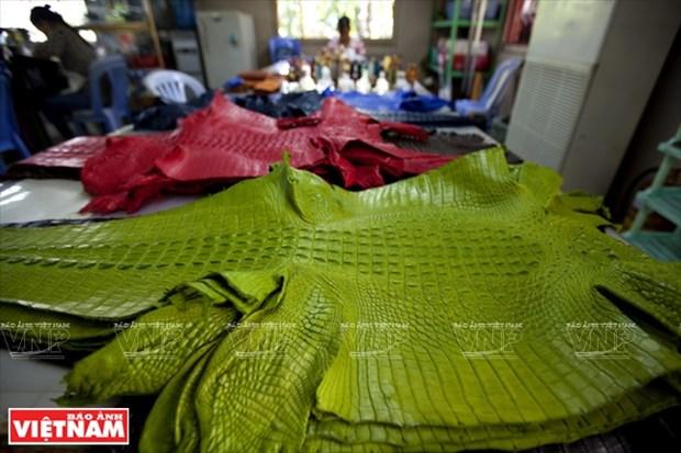 越南鞋业随时迎接新一代自由贸易协定 hinh anh 7