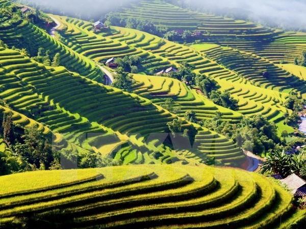 蒙族旅游文化村将成为河江省旅游业的亮点 hinh anh 1