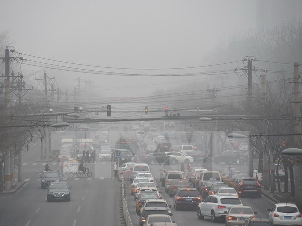 世卫组织:东南亚是世界上空气污染最为严重的地区之一 hinh anh 1