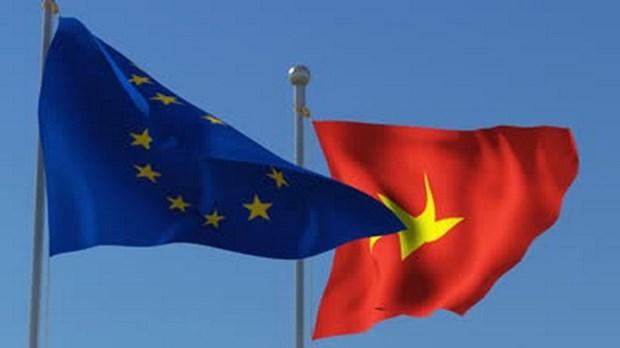 越南驻比利时大使:越南与欧盟合作得到全面发展 hinh anh 1