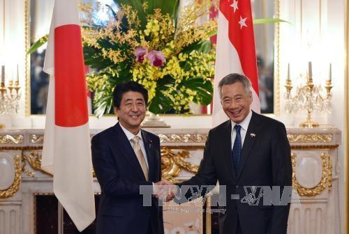 日新两国就TPP和东海问题达成共识 hinh anh 1
