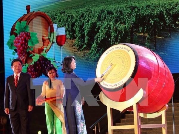 2016年宁顺省葡萄与葡萄酒节正式开幕 hinh anh 1