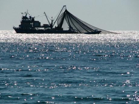 缅甸南部部分岛屿实施禁渔 hinh anh 1