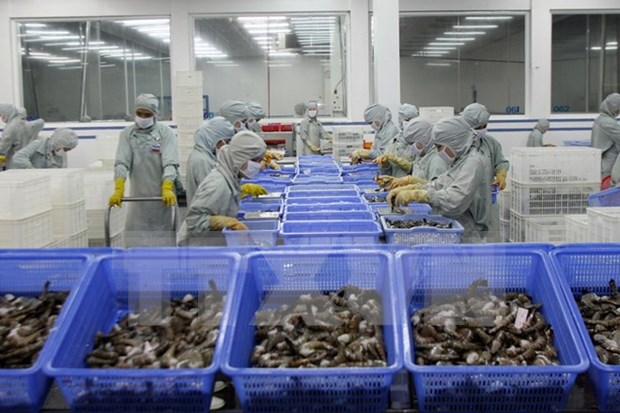 《世贸组织贸易便利化协定》实施计划获批 hinh anh 1