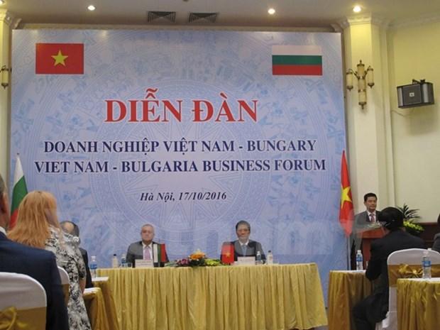 保加利亚企业关注越南的招商引资政策 hinh anh 1