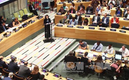 越南在联合国经济和社会理事会的烙印 hinh anh 1
