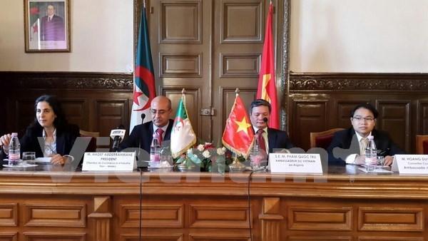 深化越南与阿尔及利亚经贸合作关系 hinh anh 1
