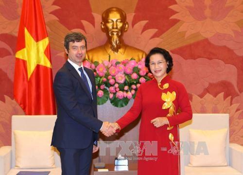 越南国会主席阮氏金银会见意大利司法部部长 hinh anh 1