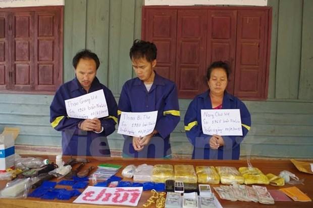 越南政府副总理张和平:绝不能使边境地区成为毒品交易的集散地 hinh anh 1