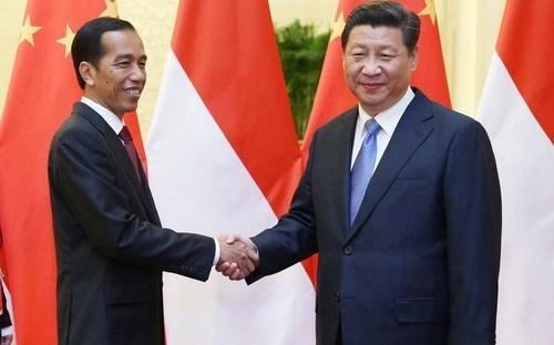 中国对印尼投资增长迅速 hinh anh 1