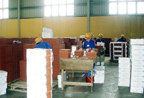 今年前10个月广宁省工业生产指数同比增长5.47% hinh anh 1
