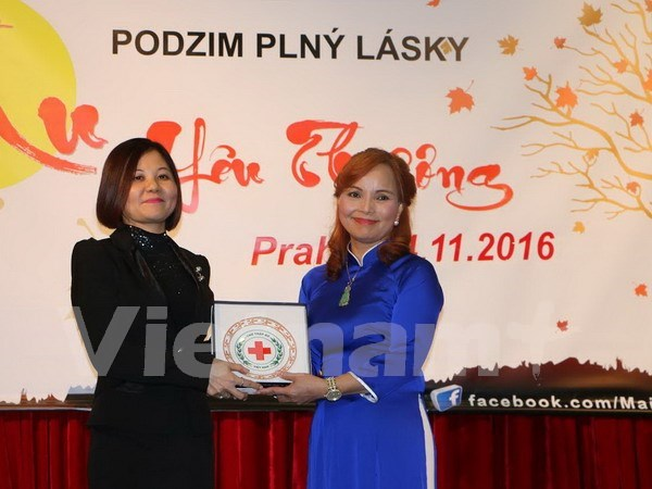 越南红十字会代表团对捷克进行工作访问 hinh anh 1