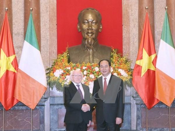 越南国家主席陈大光设宴招待爱尔兰总统迈克尔•希金斯 hinh anh 1
