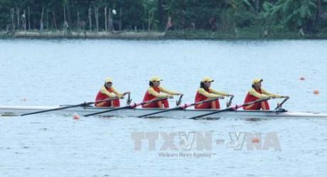 2016年东南亚划船锦标赛:越南队夺冠 hinh anh 1