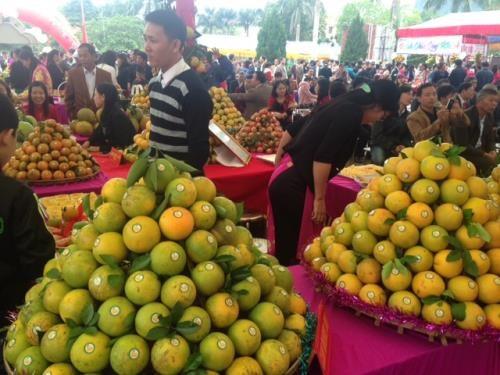 越南和平省第二次高峰橙子节正式开幕 hinh anh 1