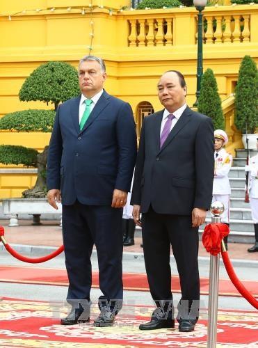 政府总理阮春福与匈牙利总理维克多•奥尔班举行会谈 hinh anh 2