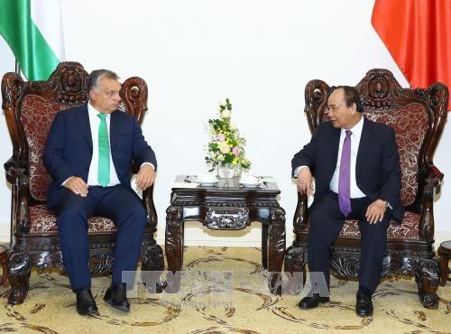政府总理阮春福与匈牙利总理维克多•奥尔班举行会谈 hinh anh 1