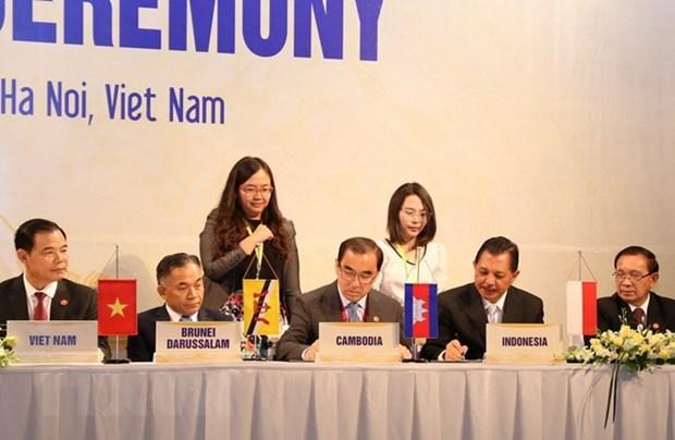 东盟与中日韩加强粮食安全合作 hinh anh 1
