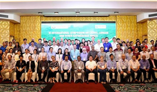 越南学习借鉴龙眼与荔枝生产国际经验 hinh anh 3