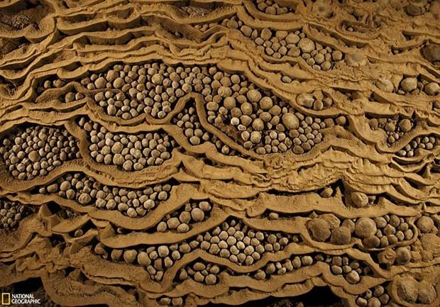 山洞窟——世界上最大的洞穴 hinh anh 9