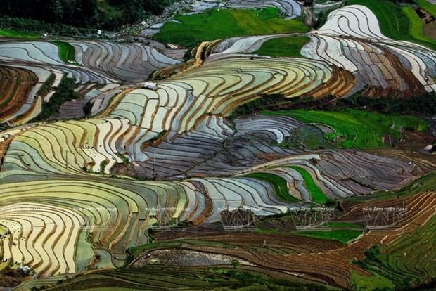 越南:木岗寨梯田美景 hinh anh 1