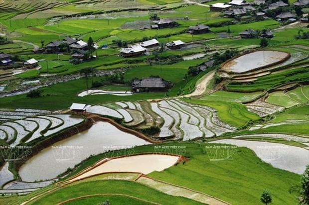 越南:木岗寨梯田美景 hinh anh 4