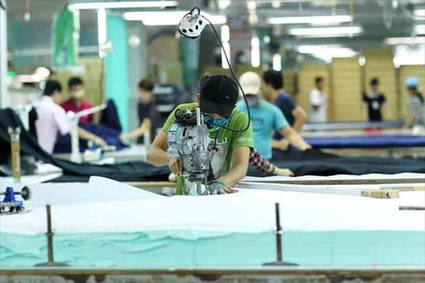 顺化纺织服装跻身国际大舞台 hinh anh 4