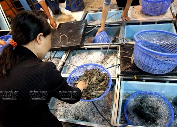 平田农产食品批发市场 hinh anh 6