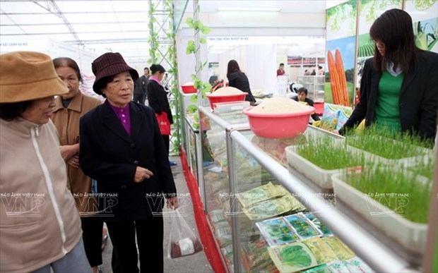 河内发展高科技农业 hinh anh 9