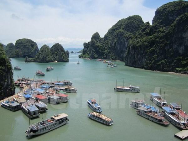 2015年前8个月广宁省接待游客量逾600万人次 hinh anh 1