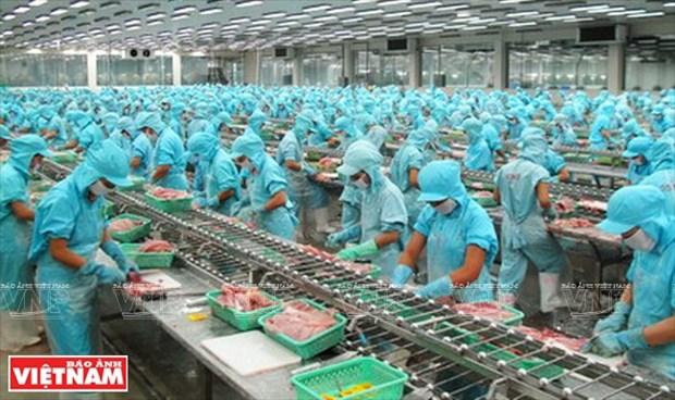 世界对越南革新时期的经济成就印象深刻 hinh anh 2
