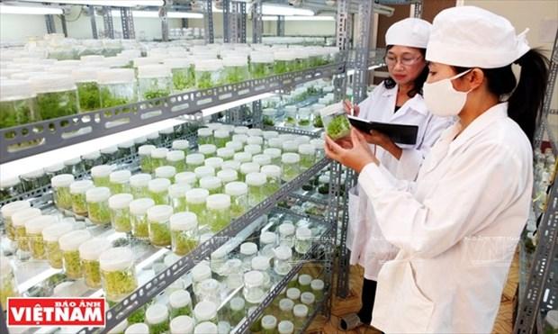 世界对越南革新时期的经济成就印象深刻 hinh anh 6