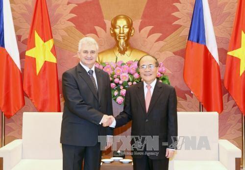 越南国会主席阮生雄与捷克参议院议长米兰·什捷赫举行会谈 hinh anh 1