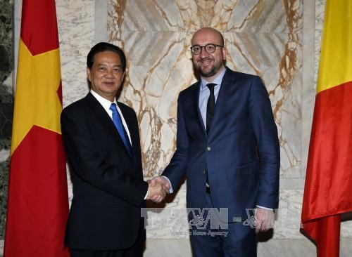 越南政府总理阮晋勇与比利时首相沙赫勒·米歇尔举行会谈 hinh anh 2
