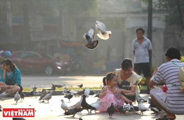 西贡圣母大教堂 hinh anh 10