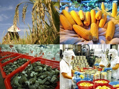 五年来越南出口额保持较好的增长态势 hinh anh 1