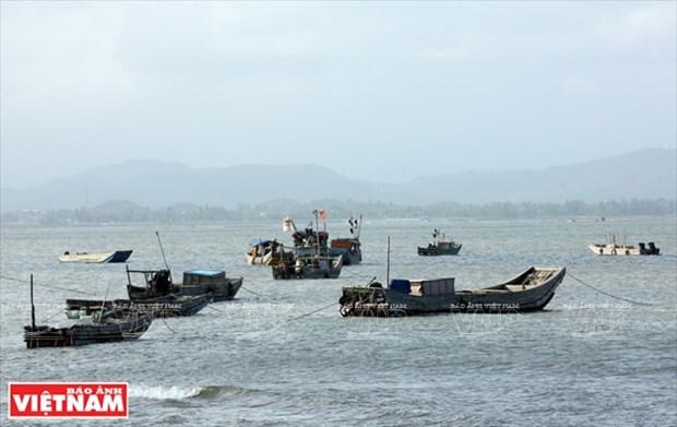 越南祖国最北的海滩——茶古海滩 hinh anh 7