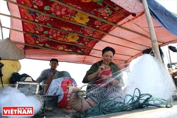 越南祖国最北的海滩——茶古海滩 hinh anh 9