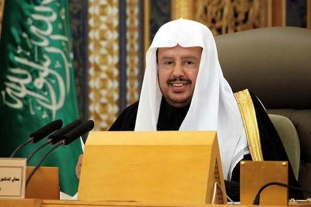沙特阿拉伯王国协商会议主席即将对越南进行正式访问 hinh anh 1