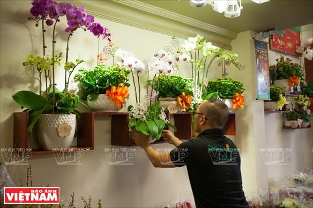 大叻蔬菜与花卉王国 hinh anh 22