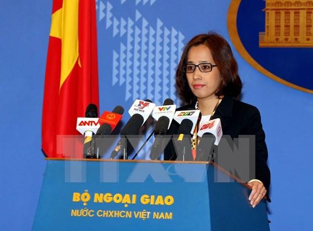 越南外交部副发言人:有关各方应避免采取使北部湾湾口海域局势复杂化的单方面行为 hinh anh 1