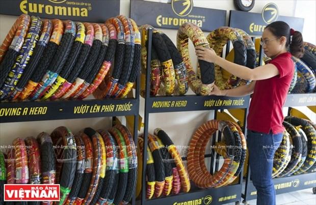 东南亚一流轮胎厂家Casumina hinh anh 10