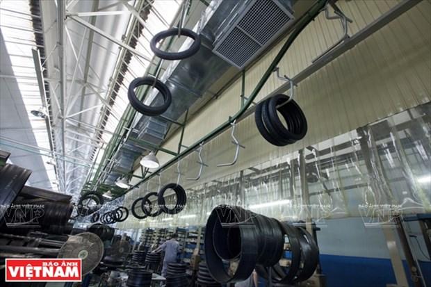 东南亚一流轮胎厂家Casumina hinh anh 6