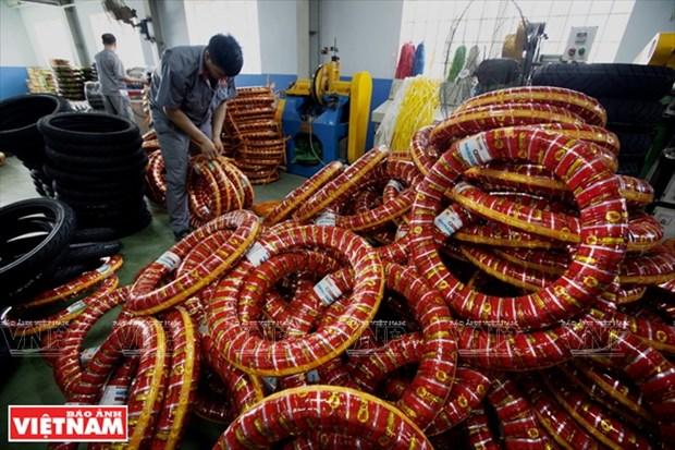 东南亚一流轮胎厂家Casumina hinh anh 9