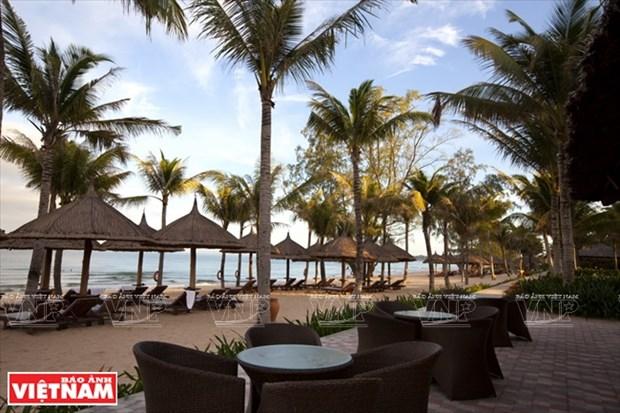 房地产和旅游业领先集团 Vingroup hinh anh 3